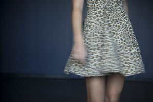 Jamie Swirling Leopard Dress